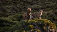 Lionking2019-animationscreencaps.com-9564
