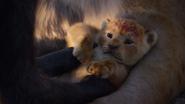 Lionking2019-animationscreencaps.com-329