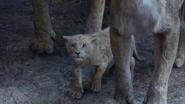 Lionking2019-animationscreencaps.com-5914