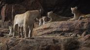 Lionking2019-animationscreencaps.com-7120