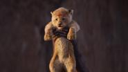 Lionking2019-animationscreencaps.com-404