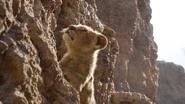 Lionking2019-animationscreencaps.com-4976