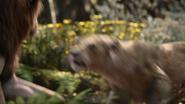 Lionking2019-animationscreencaps.com-9104