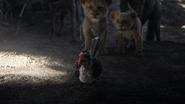 Lionking2019-animationscreencaps.com-3174