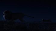 Lionking2019-animationscreencaps.com-3720