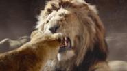 Lionking2019-animationscreencaps.com-4924