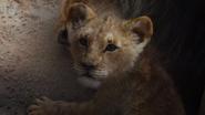 Lionking2019-animationscreencaps.com-5334