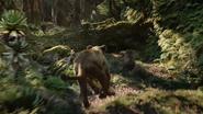 Lionking2019-animationscreencaps.com-9058