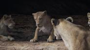 Lionking2019-animationscreencaps.com-7316