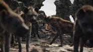 Lionking2019-animationscreencaps.com-3320