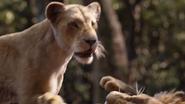 Lionking2019-animationscreencaps.com-9128