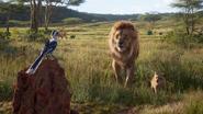 Lionking2019-animationscreencaps.com-1533
