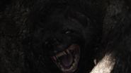 Lionking2019-animationscreencaps.com-3214