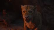 Lionking2019-animationscreencaps.com-11623