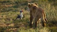 Lionking2019-animationscreencaps.com-1663