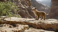Lionking2019-animationscreencaps.com-4514