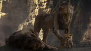 Lionking2019-animationscreencaps.com-5361