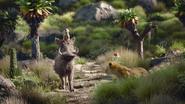 Lionking2019-animationscreencaps.com-6573