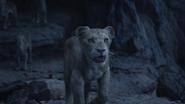 Lionking2019-animationscreencaps.com-11434