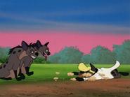 TVD hyenas11