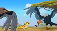 Vulturedefense