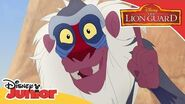 Good King Simba Music Video The Lion Guard Disney Channel Africa