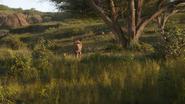 Lionking2019-animationscreencaps.com-1501