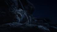 Lionking2019-animationscreencaps.com-7737