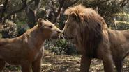 Lionking2019-animationscreencaps.com-9164