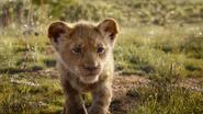 Lionking2019-animationscreencaps.com-1742
