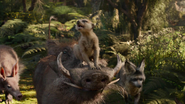 Lionking2019-animationscreencaps.com-8943