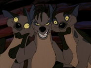 CTAY hyenas3