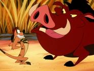 KBMF Timon & Pumbaa12