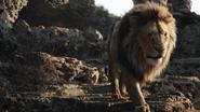 Lionking2019-animationscreencaps.com-3448