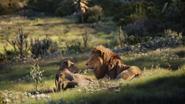 Lionking2019-animationscreencaps.com-9502
