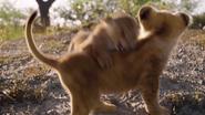 Lionking2019-animationscreencaps.com-2749