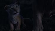 Lionking2019-animationscreencaps.com-3661