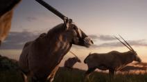 Lionking2019-animationscreencaps.com-25