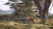 Lionking2019-animationscreencaps.com-2335