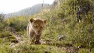Lionking2019-animationscreencaps.com-1718