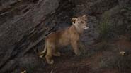 Lionking2019-animationscreencaps.com-1809