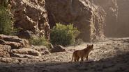 Lionking2019-animationscreencaps.com-5128