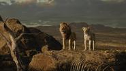 Lionking2019-animationscreencaps.com-10666