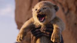 Lionking2019-animationscreencaps.com-12800