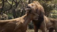 Lionking2019-animationscreencaps.com-9161