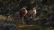 Lionking2019-animationscreencaps.com-9705