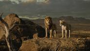 Lionking2019-animationscreencaps.com-10674