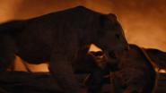 Lionking2019-animationscreencaps.com-11756