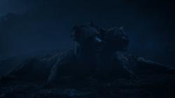 Lionking2019-animationscreencaps.com-3907