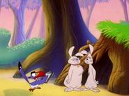 ZOBOD Zazu & hares